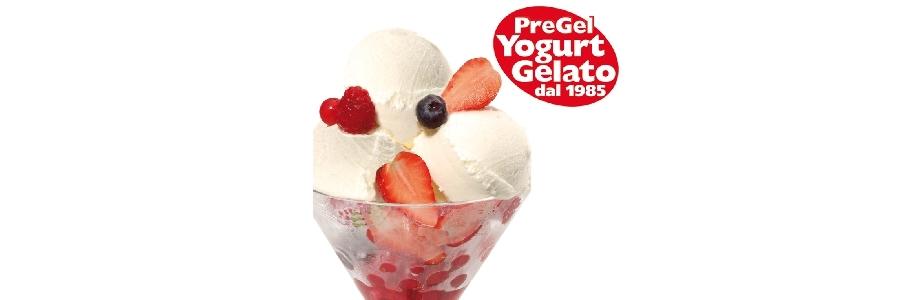 Pregel Yoghurteis