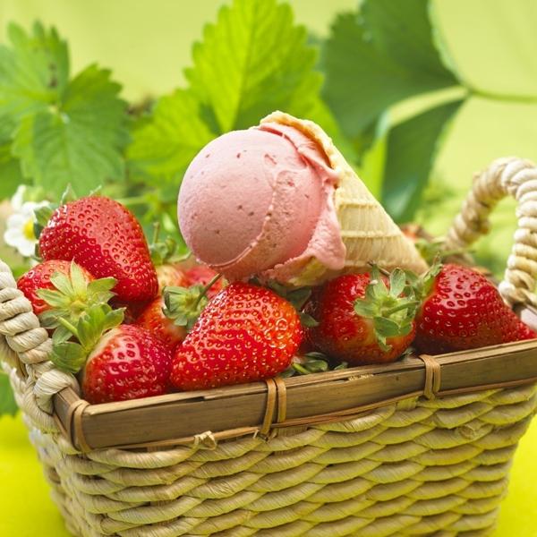 Eispaste Erdbeer Gelatop - 5 Kg