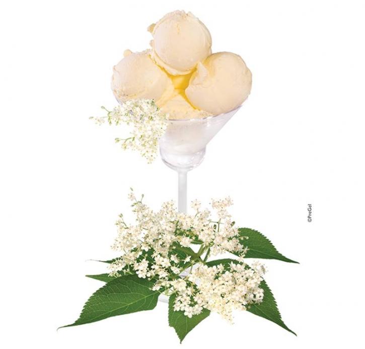 Pregel Fruchtzubereitung Ugo (Hugo) Holunderblüte - 3 Kg