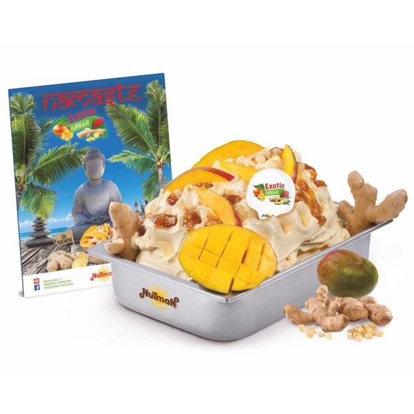 Nutman Kit Exotic Ginger / Ingwer - 11 Kg