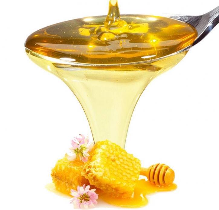 (8,98 €/Kg) Pregel Honig NA Sauce - 1 Kg